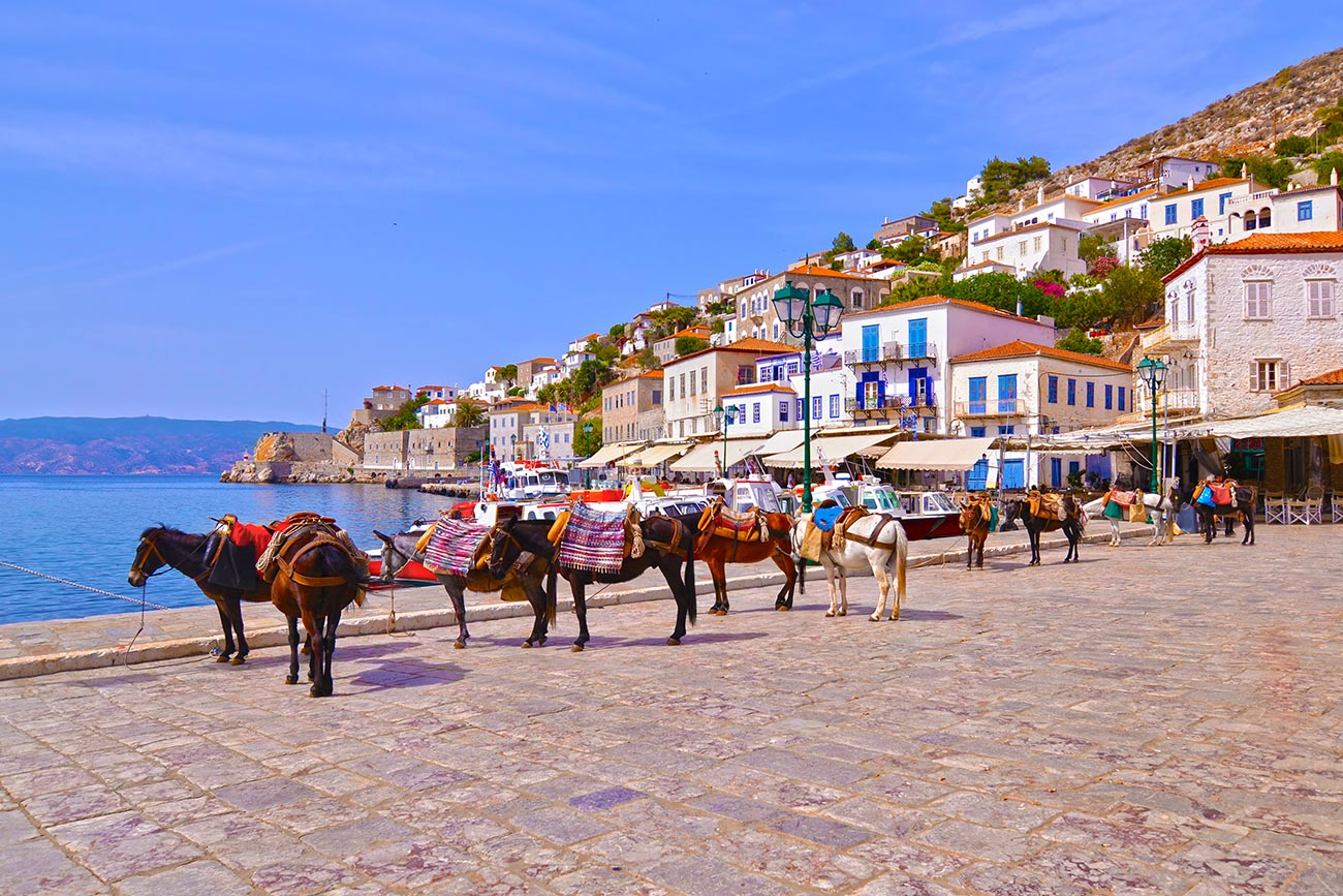 Hydra. Donkeys parking.
