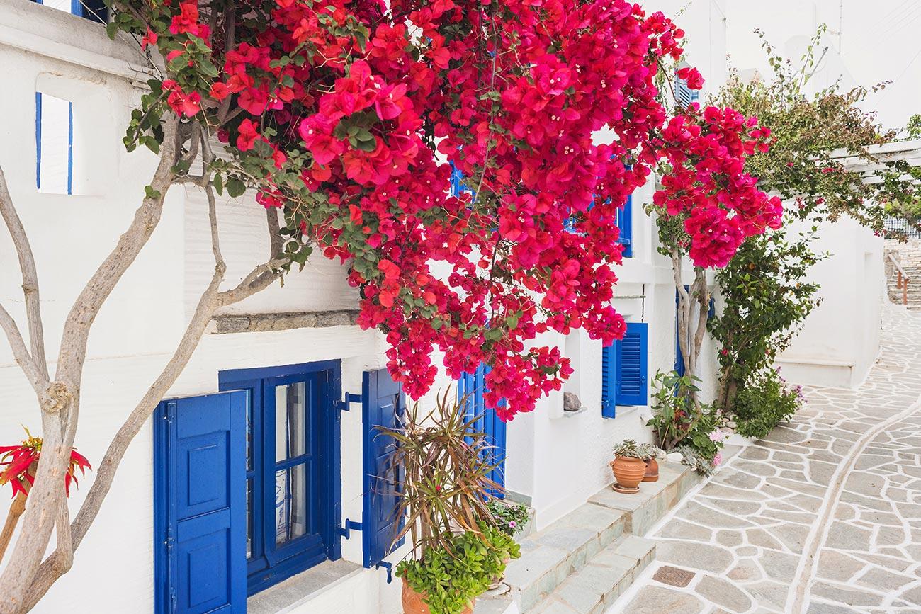 Paros. Naoussa. Traditional houses.